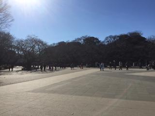 動物園前広場 昔はここに大群の鳩がいたのですが…