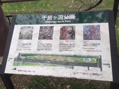 千鳥ヶ淵公園案内図
