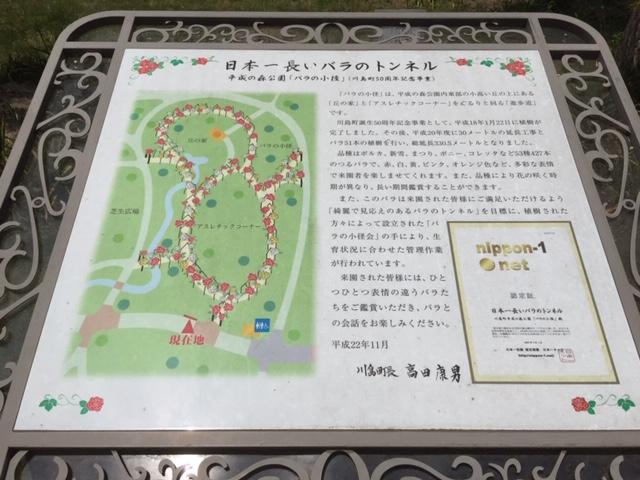 大人も子供も楽しめる平成の森公園