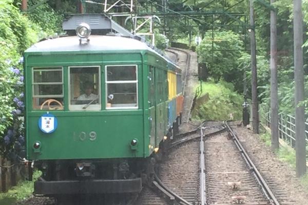 あじさい電車でスイッチバック体験にかまぼこ作り体験、うなぎと温泉