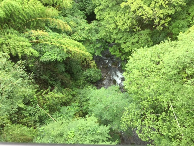 堂ヶ島渓谷