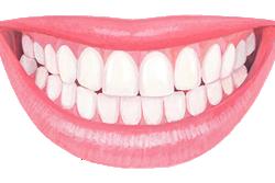 口腔ケアは正しい歯磨きから