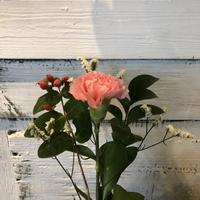 今週のお花4