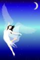 ポストカード 夜に舞う天使