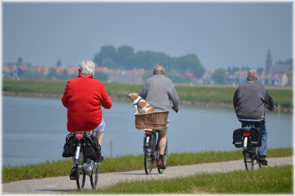 senior-bicycle
