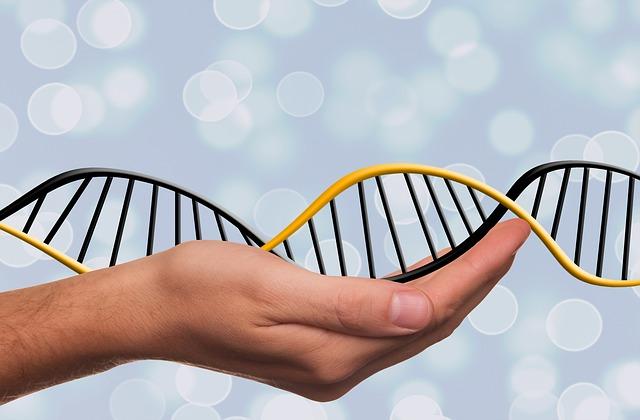 DNA width=