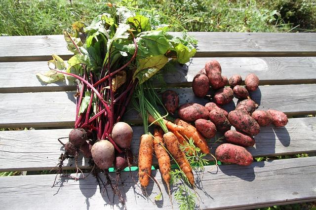 carrots beets