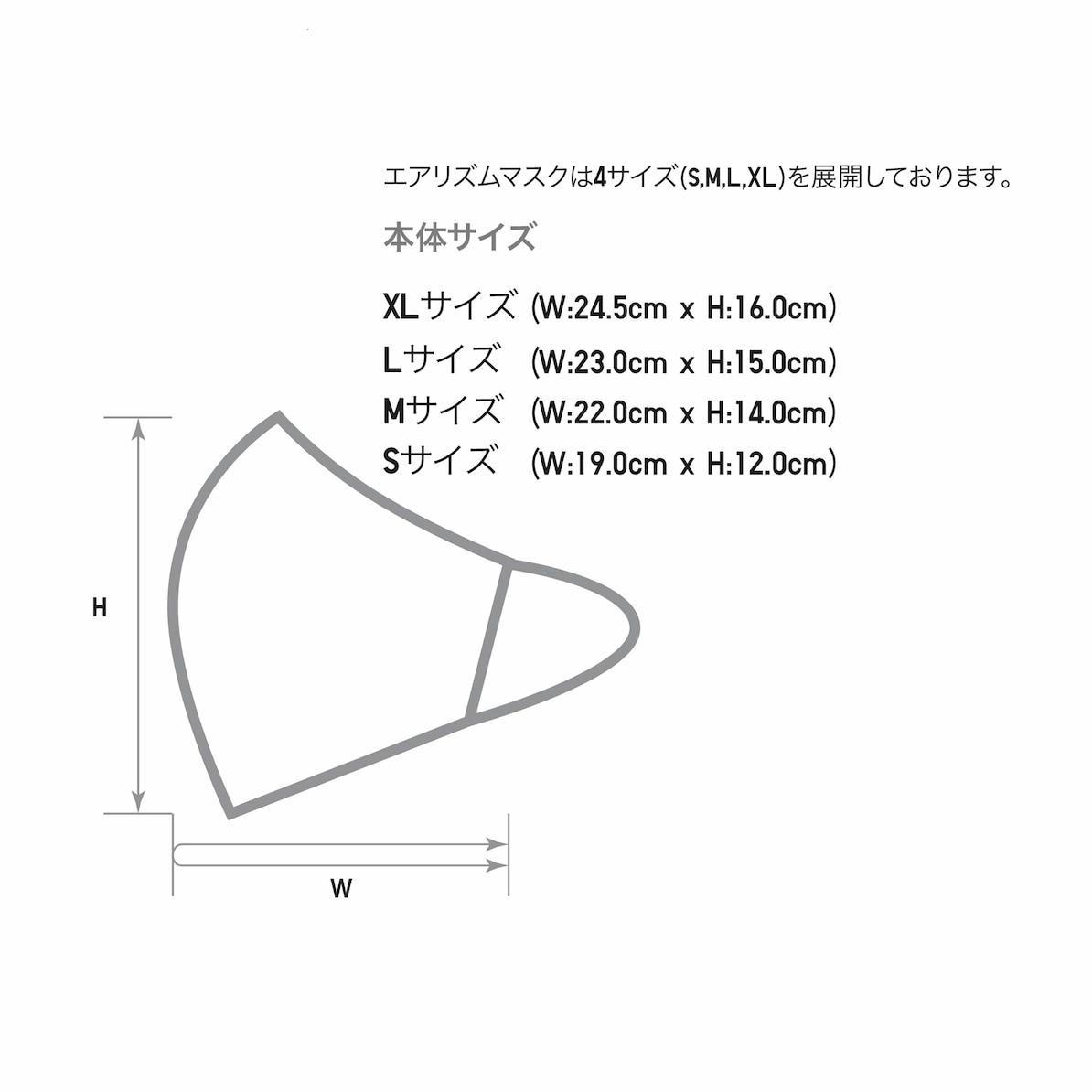 f:id:larkkun:20210226103329j:plain