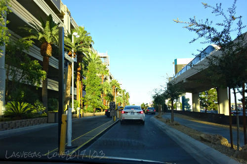 MGM駐車場