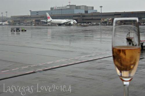 JAL 乾杯