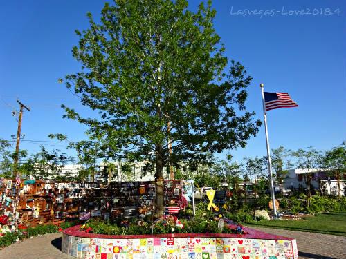 Tree of Life  生命の木