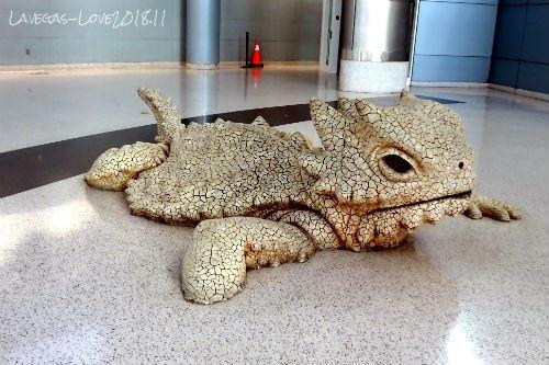 像 爬虫類 マッキャラン空港