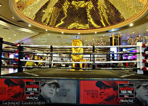 ライオン MGMグランド ラスベガス