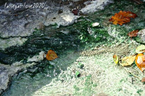 f:id:lasvegas-love:20210103152020j:plain