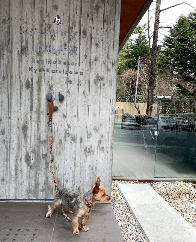 レジーナリゾート旧軽井沢 宿泊