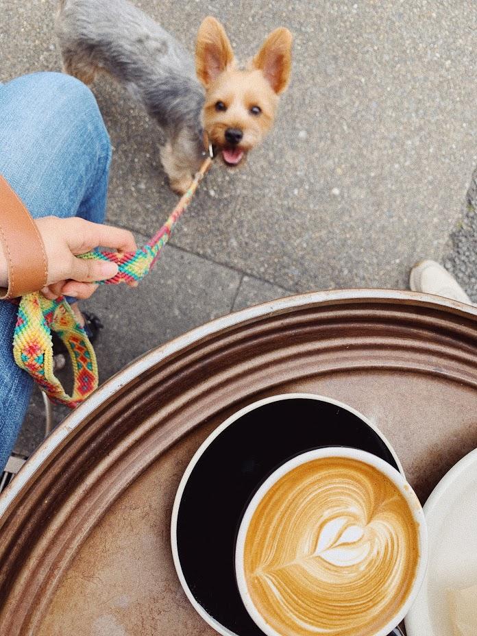 ペット可カフェ