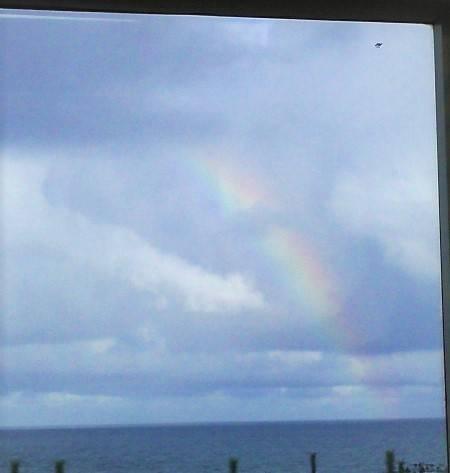 車窓から見える虹