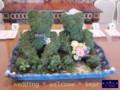 [プリザーブドフラワー][名古屋市名東区一社][花屋]プリザーブドフラワー・ウエルカムベアー