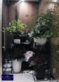 [スタンド花][フラワーアレンジ][名古屋市名東区一社][花屋][祝い]フラワーアレンジ・クラブ
