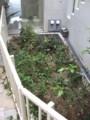 [施工前][名古屋市名東区一社][ガーデニング][花屋]シェイドガーデン