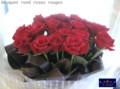 [花束][名古屋市名東区一社][花屋][誕生日の花束]歳の数だけのバラの花束