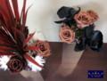 [プリザーブドフラワー][アートフラワー][名古屋市名東区一社][花屋]プリザーブドフラワー 名古屋 モダン アートフラワー