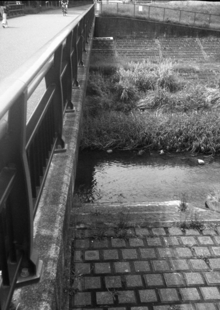 フジカハーフにて撮影 モノクロ 自家現像