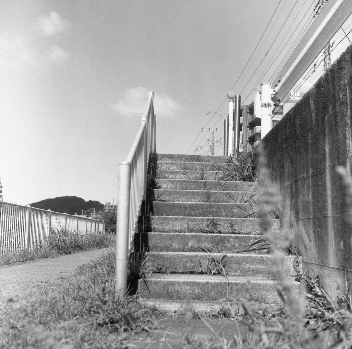 マミヤフレックスIIにて撮影 モノクロ 自家現像