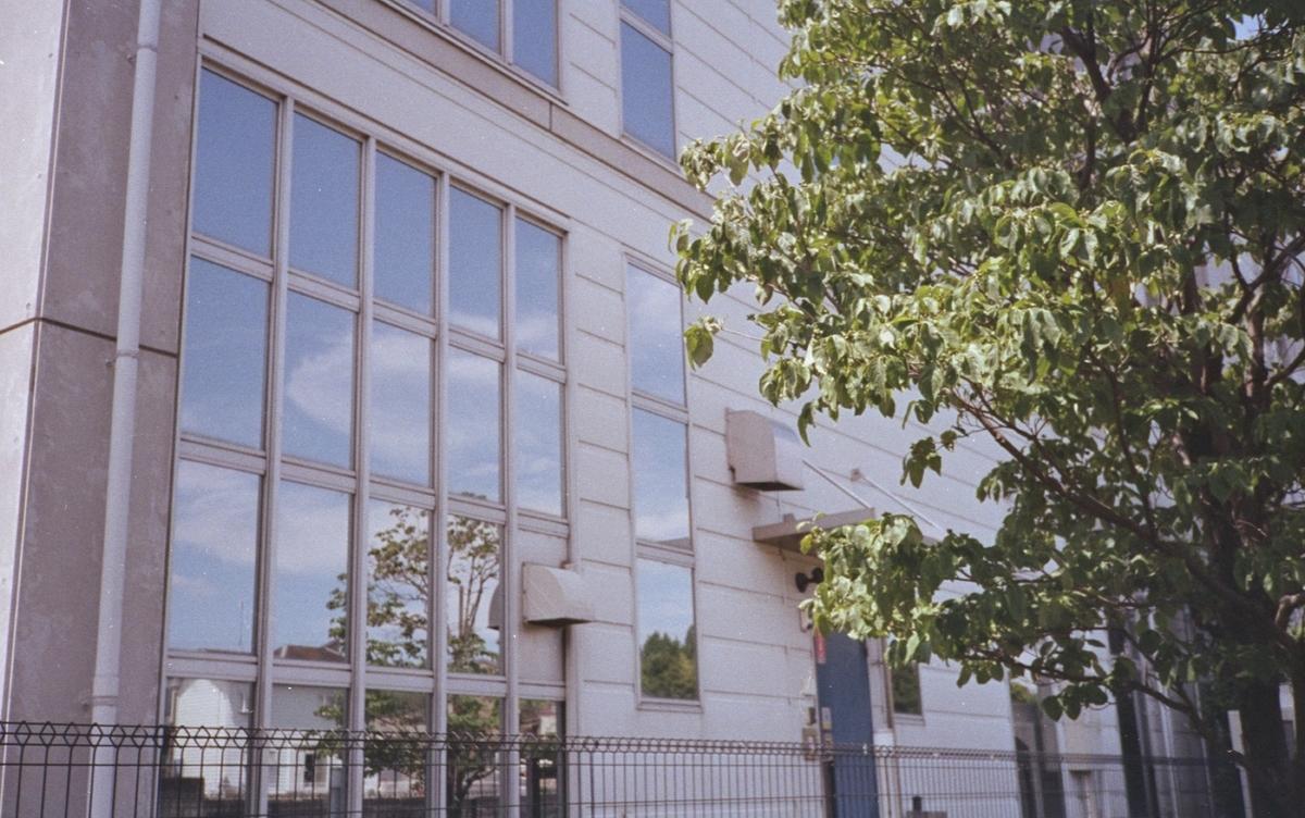 フラッシュフジカにて撮影 カラーネガフィルム 自家現像