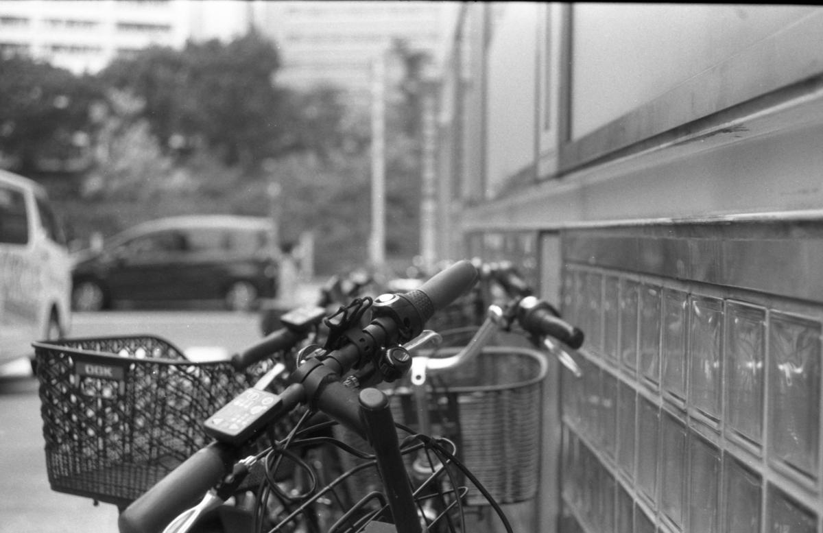ライカM4にて撮影 モノクロ 自家現像