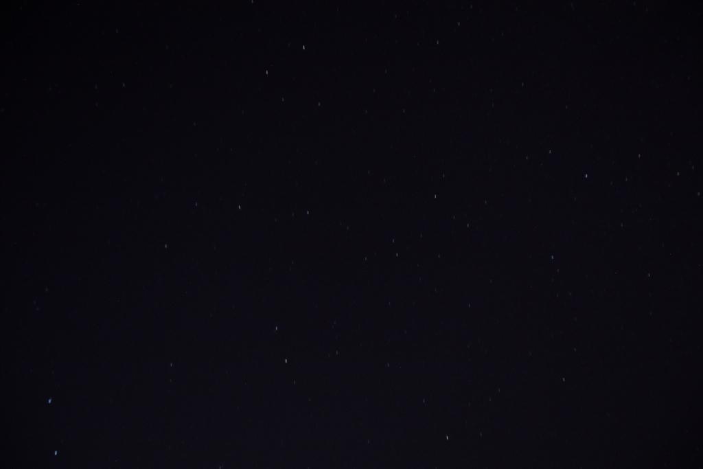 f:id:leiurus:20180907200416j:plain