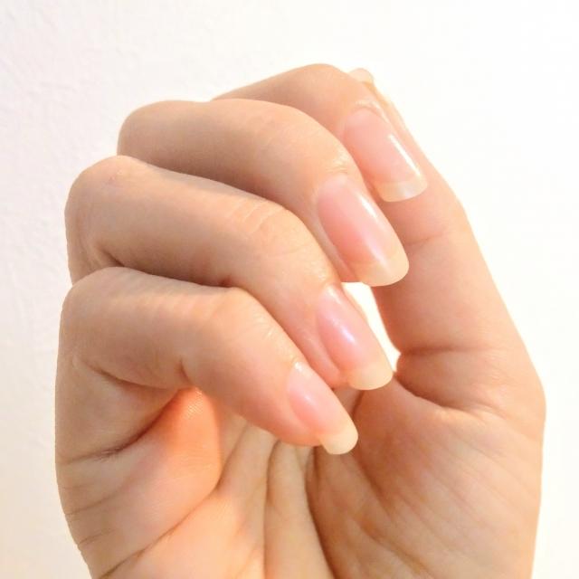 爪は皮膚の爪は