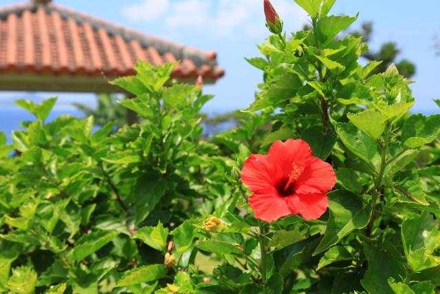 沖縄ひとり旅