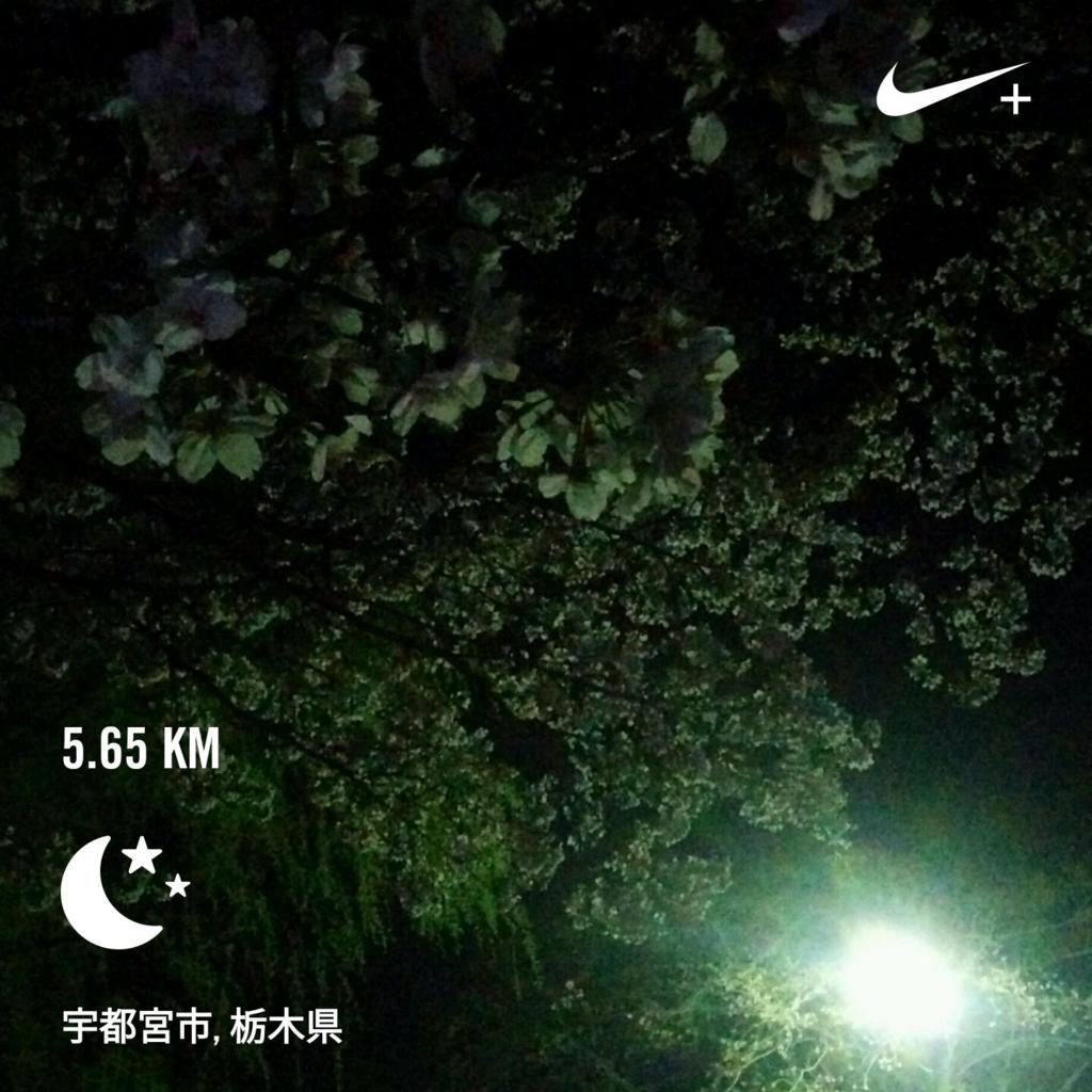 f:id:leo-roy:20170416003537j:plain