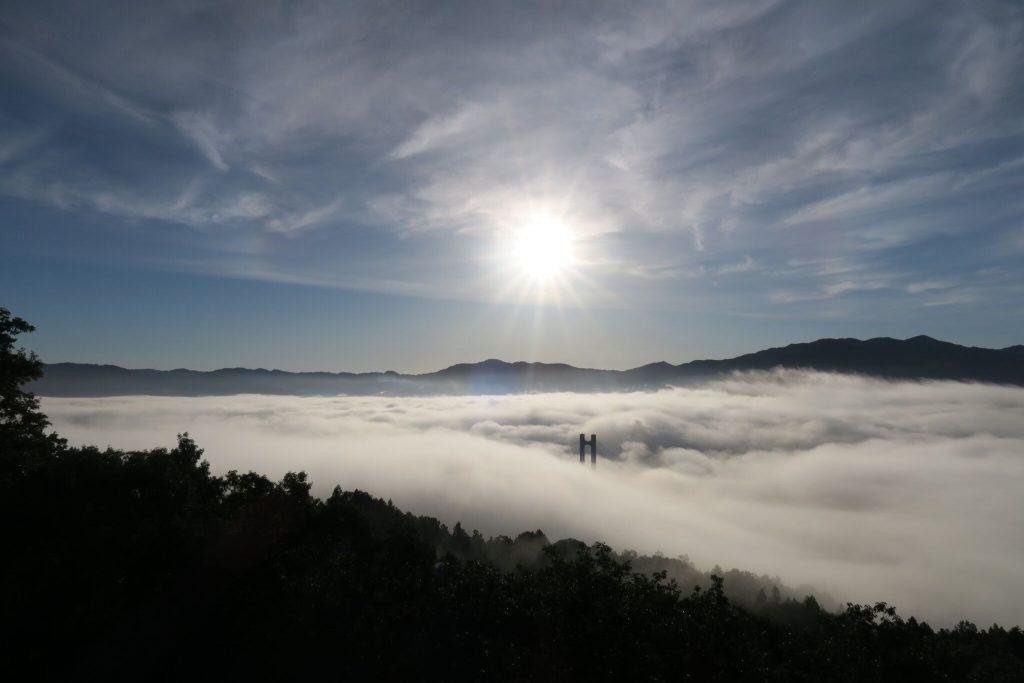 秩父ミューズパークから見る雲海