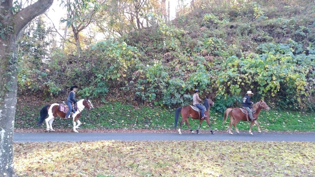 RVパークみどりの村 乗馬