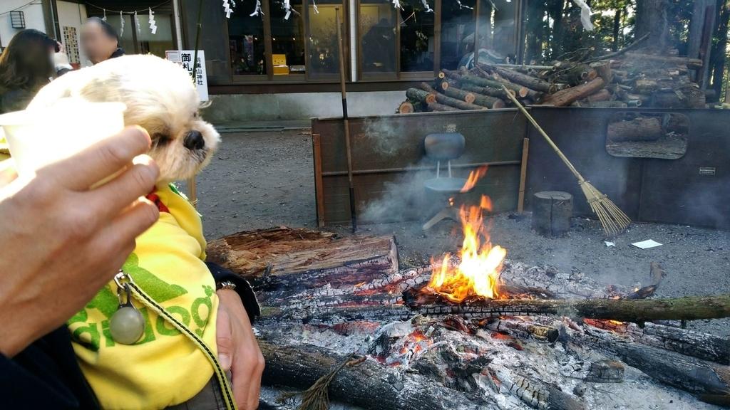 羽黒山神社の甘酒と焚火