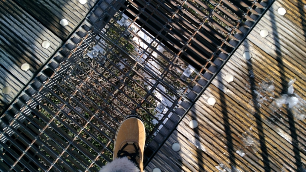 那須のつつじ吊橋