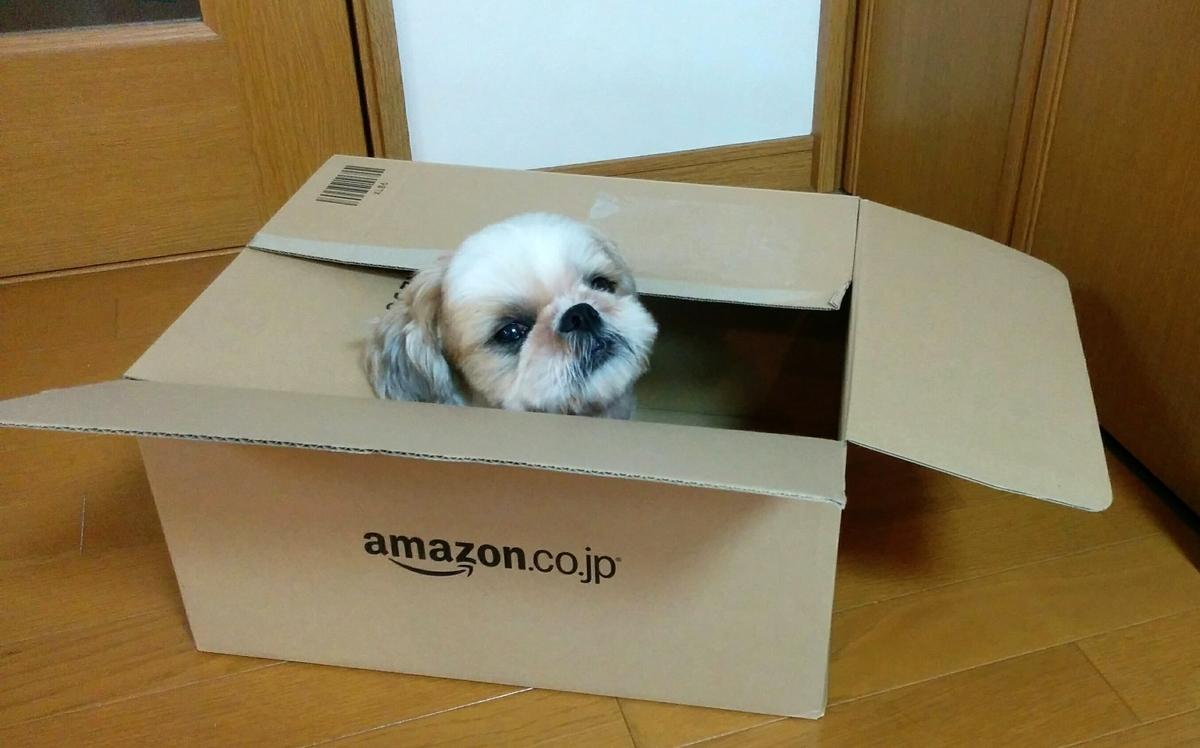 Amazon 段ボール 犬
