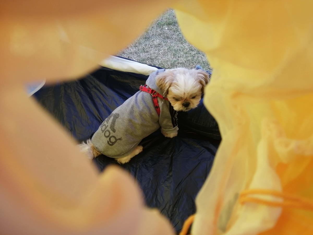 モンベル(mont-bell) テント ステラリッジテント 2型