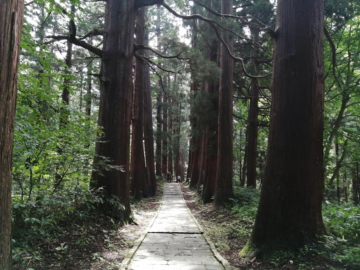 山形県鶴岡市 出羽三山神社 羽黒山の杉並木