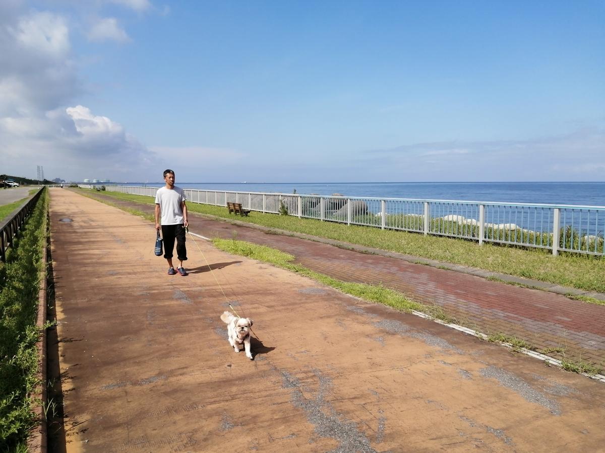 紫雲寺記念公園オートキャンプ場 キャンピングトレーラー キャンプ 犬 散歩