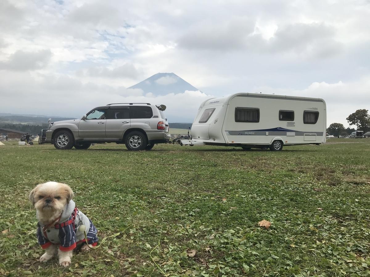 ふもとっぱら キャンプ キャンピングトレーラー シーズー キャンプ犬