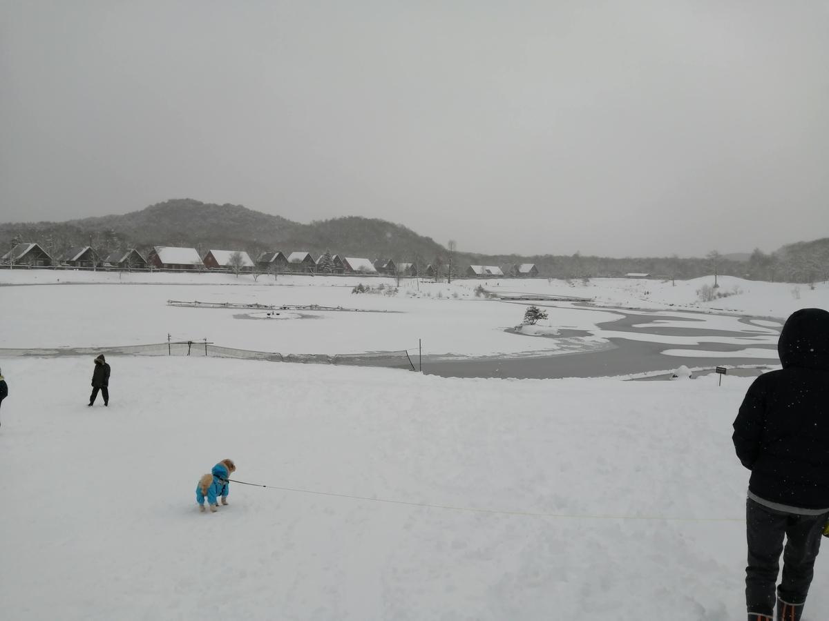 エンゼルフォレスト那須白河 キャンピングトレーラー 雪中キャンプ 羽鳥湖 大寒波