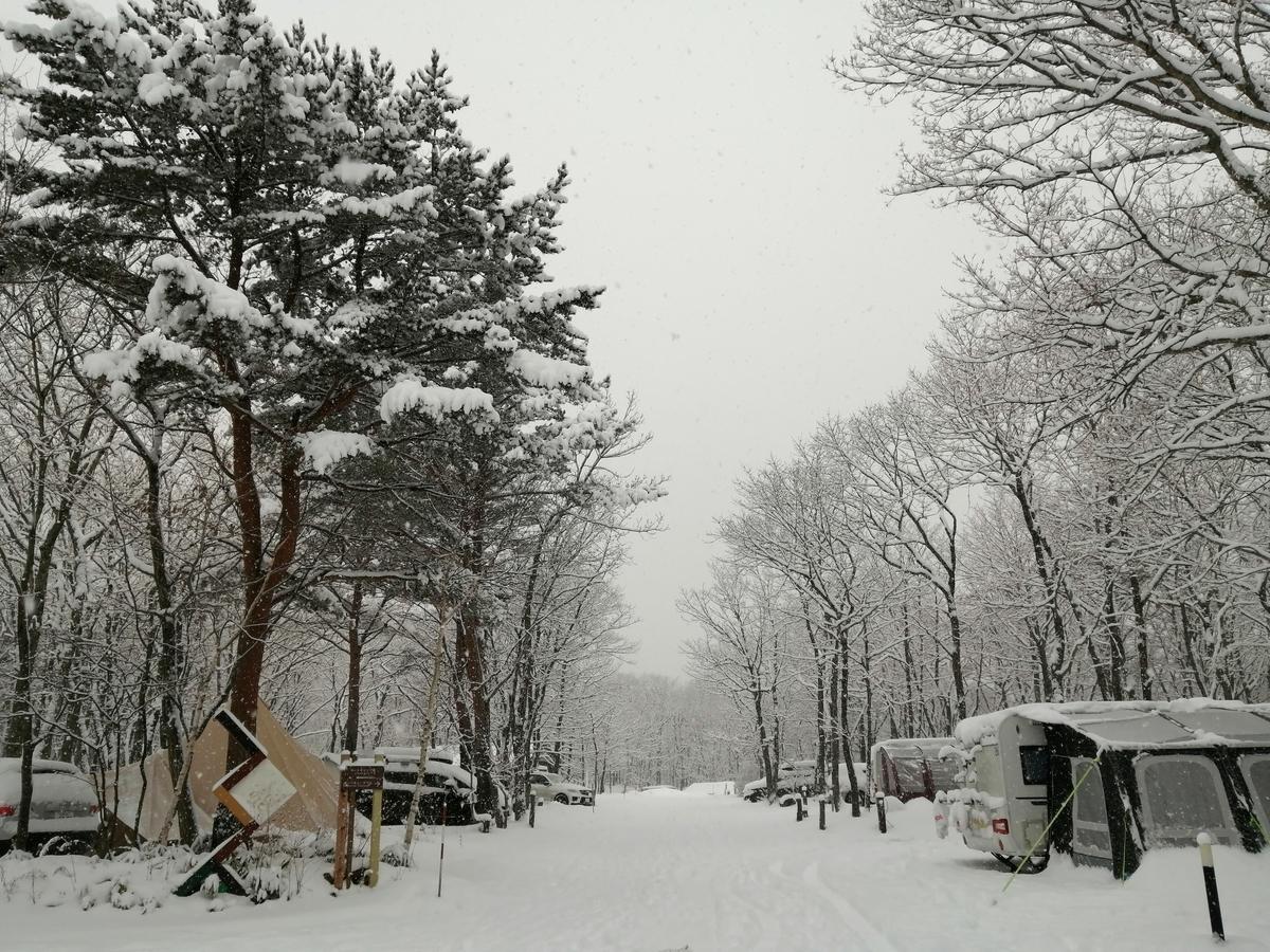 エンゼルフォレスト那須白河 雪中キャンプ 大寒波