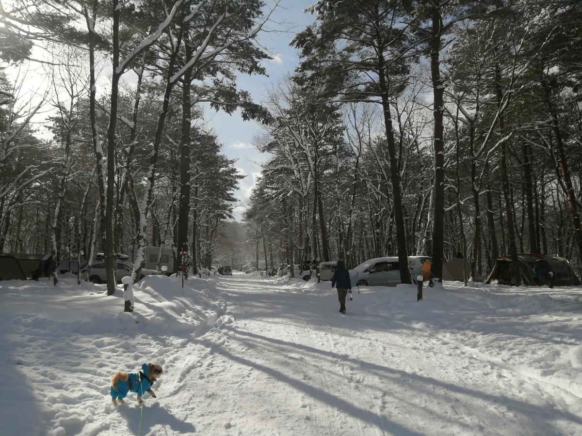 エンゼルフォレスト那須白河 キャンピングトレーラー 雪中キャンプ シーズー