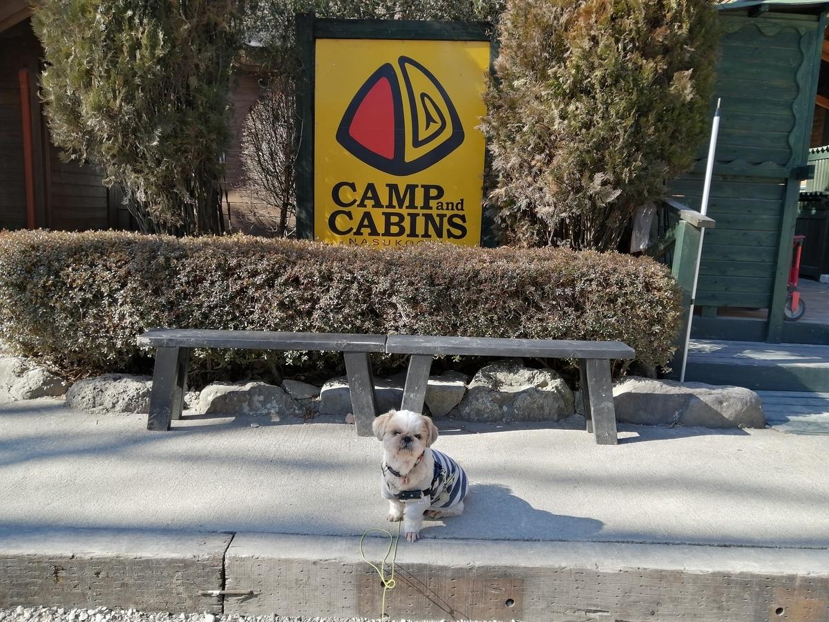 キャンプ&キャビンズ那須高原 シーズー キャンプ犬