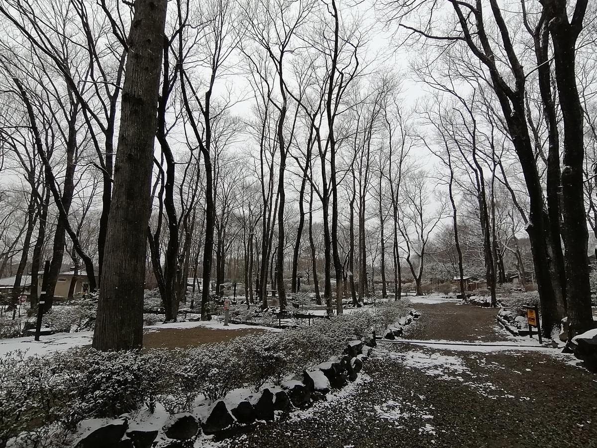キャンプ&キャビンズ那須高原 平日 2月 雪