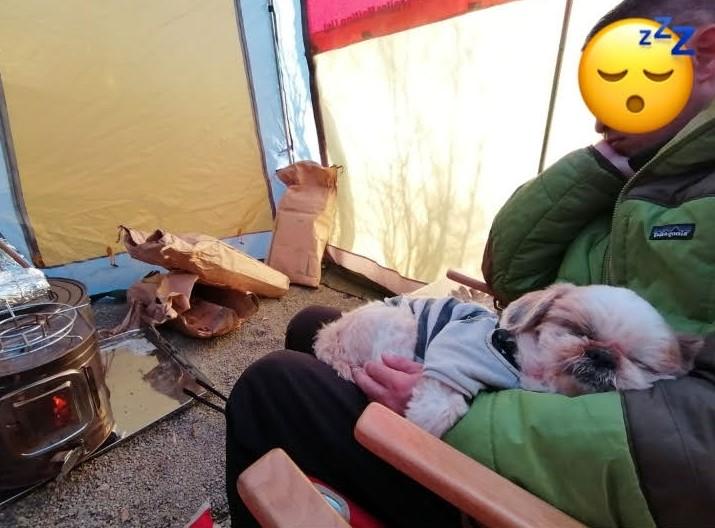 キャンプ&キャビンズ那須高原 薪ストーブ シーズー キャンプ犬