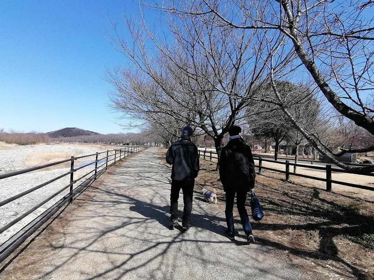 出会いの森総合公園オートキャンプ場 キャンピングトレーラー キャンプ シーズー